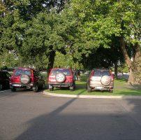 Штрафы за плохое содержание газонов