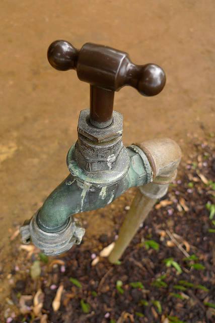 Законно ли поливать сад фекальными водами из очистных сооружений