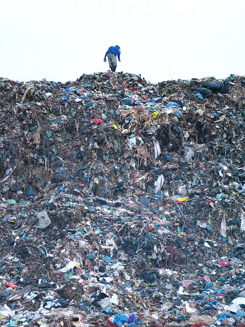 Программа Санитарной Очистки Московской Области