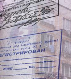В Липецке в двух квартирах прописали 221 избирателя