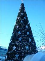 В ТОСах Засвияжского района Ульяновска организуют новогодние ёлки