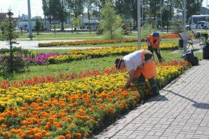 В Ульяновске вступили в силу новые правила благоустройства