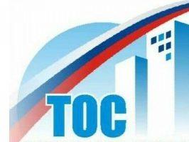 В Ульяновске отпразднуют День территориального общественного самоуправления