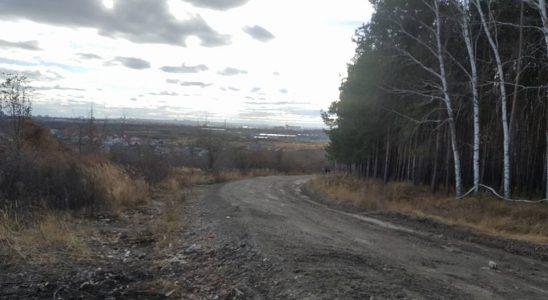 В Ульяновске ликвидировали 61 незаконную свалку